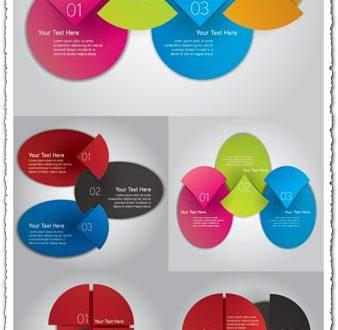 Infographics pie chart label vector