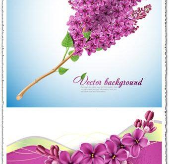 Lilac flower vector card