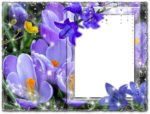 Photoshop photo frame flower and bells