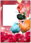 Photoshop roses photo frame