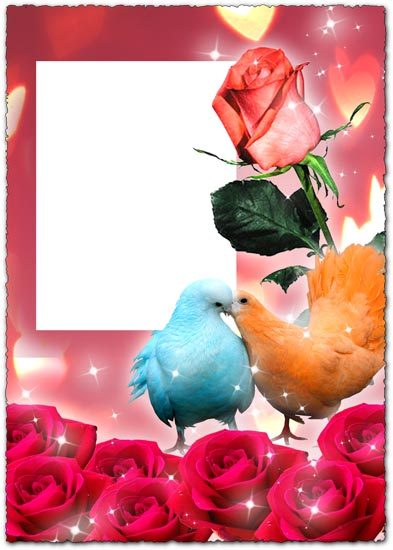 Photoshop roses photo frame