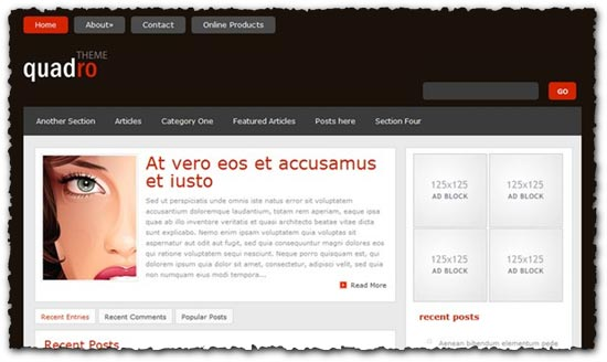 Quadro Elegantthemes wordpress template