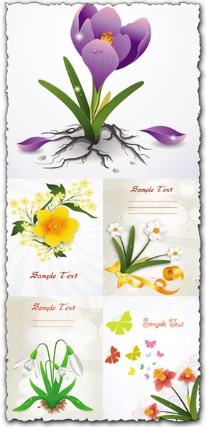 Spring floral cards vectors
