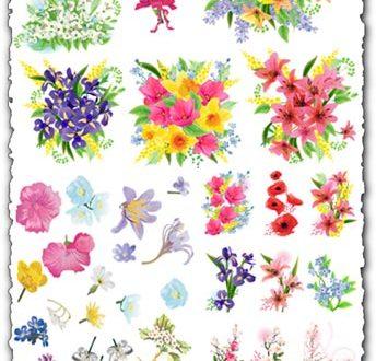 Spring flowers vectors