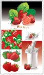 Strawberries and milk vector posters