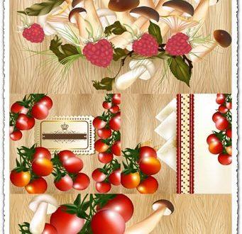 Tomatoes and mushrooms vectors