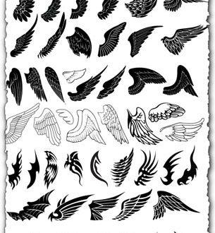 Wings design in vector format
