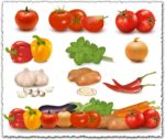 Vegetables collection vector