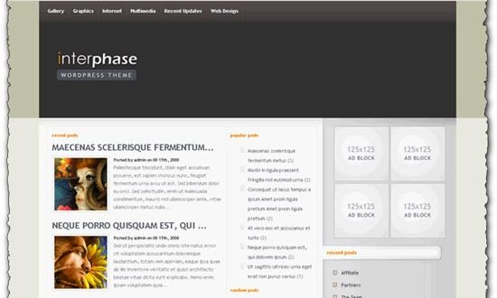 WordPress theme InterPhase Elegantthemes template