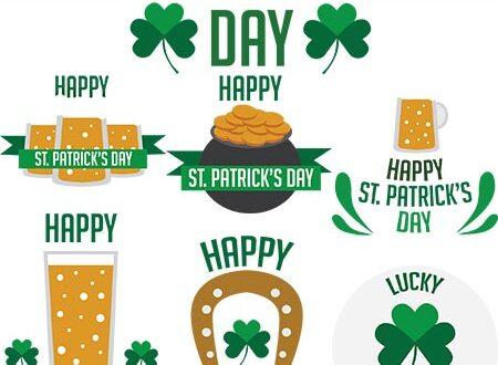 Saint Patrick's day ornaments vector
